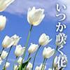 Mr.オザック & 石橋 遊 - いつか咲く花 アートワーク