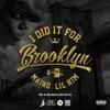 I Did It for Brooklyn feat Lil Kim Single
