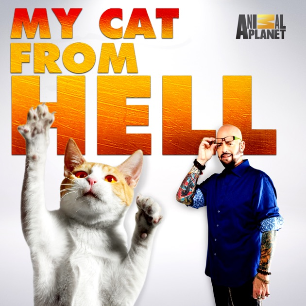 My Cat From Hell
