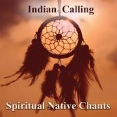 Native Healing Chant (feat. Uqualla) artwork