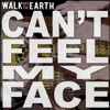 Walk Off the Earth - I Can't Feel My Face