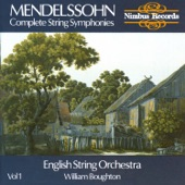 English String Orchestra - Symphony No. 3 In E Minor: Allegro Di Molto