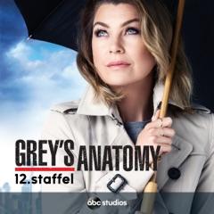 Grey's Anatomy, Staffel 12