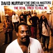 David Murray - The Devil Tried to Kill Me (feat. Taj Mahal & Sista Kee)