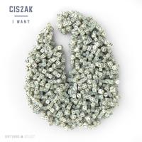 Descargar mp3  I Want - Ciszak