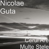 Cerul Are Multe Stele - Single, Nicolae Guta