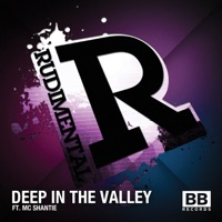 Deep in the Valley (Remixes) - EP Mp3 Download