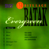 14 Lagu Hits Batak Evergreen, Vol. 1 - Various Artists