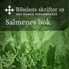 KABB - Salmenes bok (Bibel2011 - Bibelens skrifter 19 - Det Gamle Testamentet) artwork