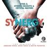 Synergy (The Remixes) - Single ジャケット写真