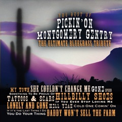 The Best of Pickin' On Montgomery Gentry: The Ultimate Bluegrass Tribute
