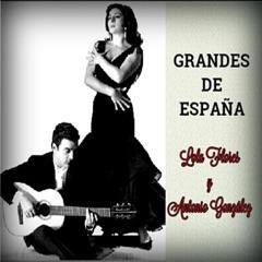 Grandes de España