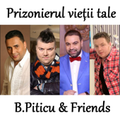 B.Piticu & Friends