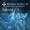 KABB - Sakarja (Bibel2011 - Bibelens skrifter 38 - Det Gamle Testamentet) artwork