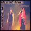 Afghani Gulcheen, Vol. 22 - Various Artists