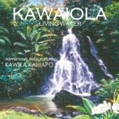 Kawika Kahiapo - Lokomaika'i / Amazing Grace (Slack Key Instrumental)