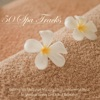 50 Spa Tracks: Relaxing Spa Meditation Music and Asian Instrumental Music for Massage, Beauty Care & Total Relaxation