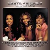Destiny's Child - Independent Women Part II (Album Version)