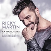 La Mordidita (Brian Cross Remix) [feat. Yotuel] - Single