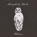 Trampled By Turtles - Wait So Long