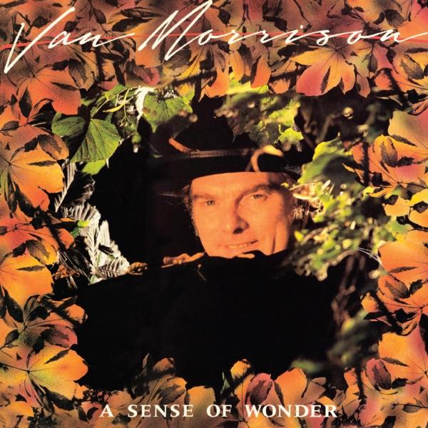 A Sense of Wonder (Bonus Track Version)