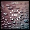 Raindrops (feat. Kerli) [Remixes, Pt. 2] - EP, SNBRN