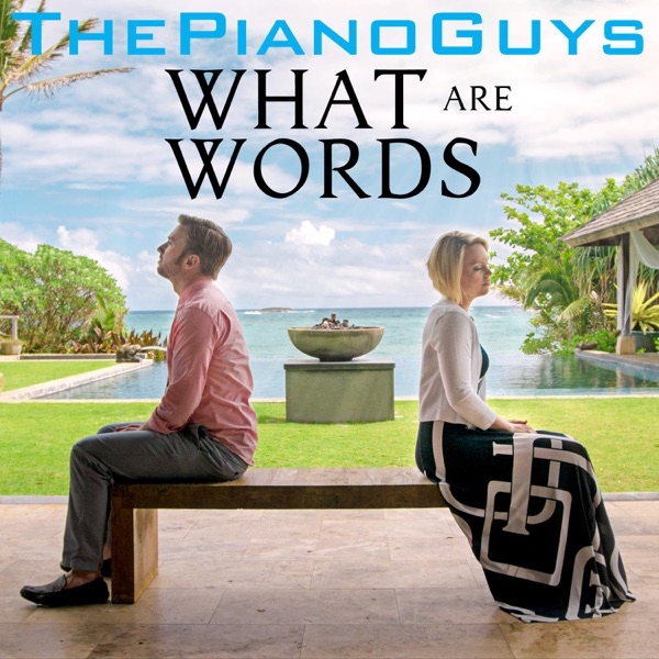 What Are Words (feat. Peter Hollens & Evynne Hollens) - Single