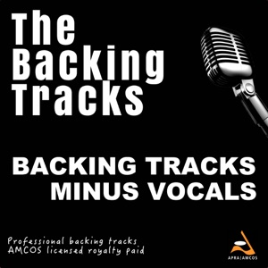 The Backing Tracks - Bills (Backing Track Version Lunchmoney Lewis)