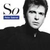 Peter Gabriel - Sledgehammer artwork