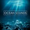 Ocean Sounds - Deep Sleep & Nature Sounds