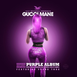 The Purple Album Mp3 Download