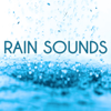 Rain Sounds - Deep Sleep & Nature Sounds