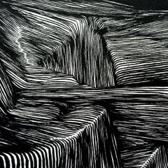 Magnetic Bodies / Maps of Bones (Bonus Track Version)