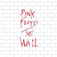 Comfortably Numb - Pink Floyd