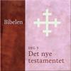 N. N. - Det nye testamentet (Bibelen 5) artwork
