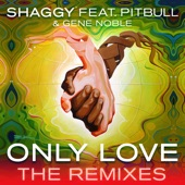 Only Love (feat. Pitbull & Gene Noble) [The Remixes] - Single