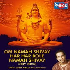 Om Namah Shivay Har Har Bole Namah Shivay (Shiv Dhun)