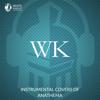 Instrumental Covers of Anathema - White Knight Instrumental