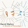 David Halley - A Month of Somedays artwork
