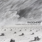 Harry Patch (In Memory Of) - Single