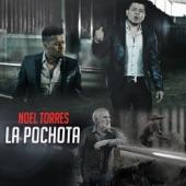Noel Torres - La Pochota