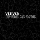 Vetiver - No One Word