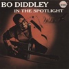In the Spotlight - Bo Diddley