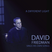 A Different Light-David Friedman