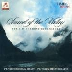 Pandit Vishwa Mohan Bhatt, PT Tarun Bhattacharya, Ram Krishna Mishra, Samrat Guha, Subrato Banerjee - Chords of Harmony with Nature - Raga Pahadi