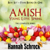 Hannah Schrock - Amish Young Spring Love Box Set (Unabridged)  artwork