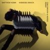 Kisses Back (Tom Swoon & Indigo Remix) - Single, Matthew Koma
