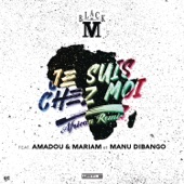 Je suis chez moi (African remix) [feat. Amadou & Mariam & Manu Dibango] - Single