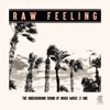 Raw Feeling - The Underground Sound of House Music, Vol. 1