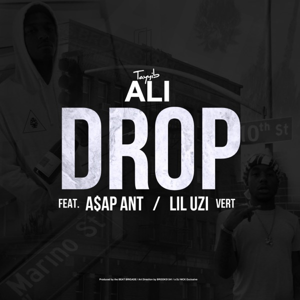 Drop (feat. A$AP Ant & Lil Uzi Vert) - Single